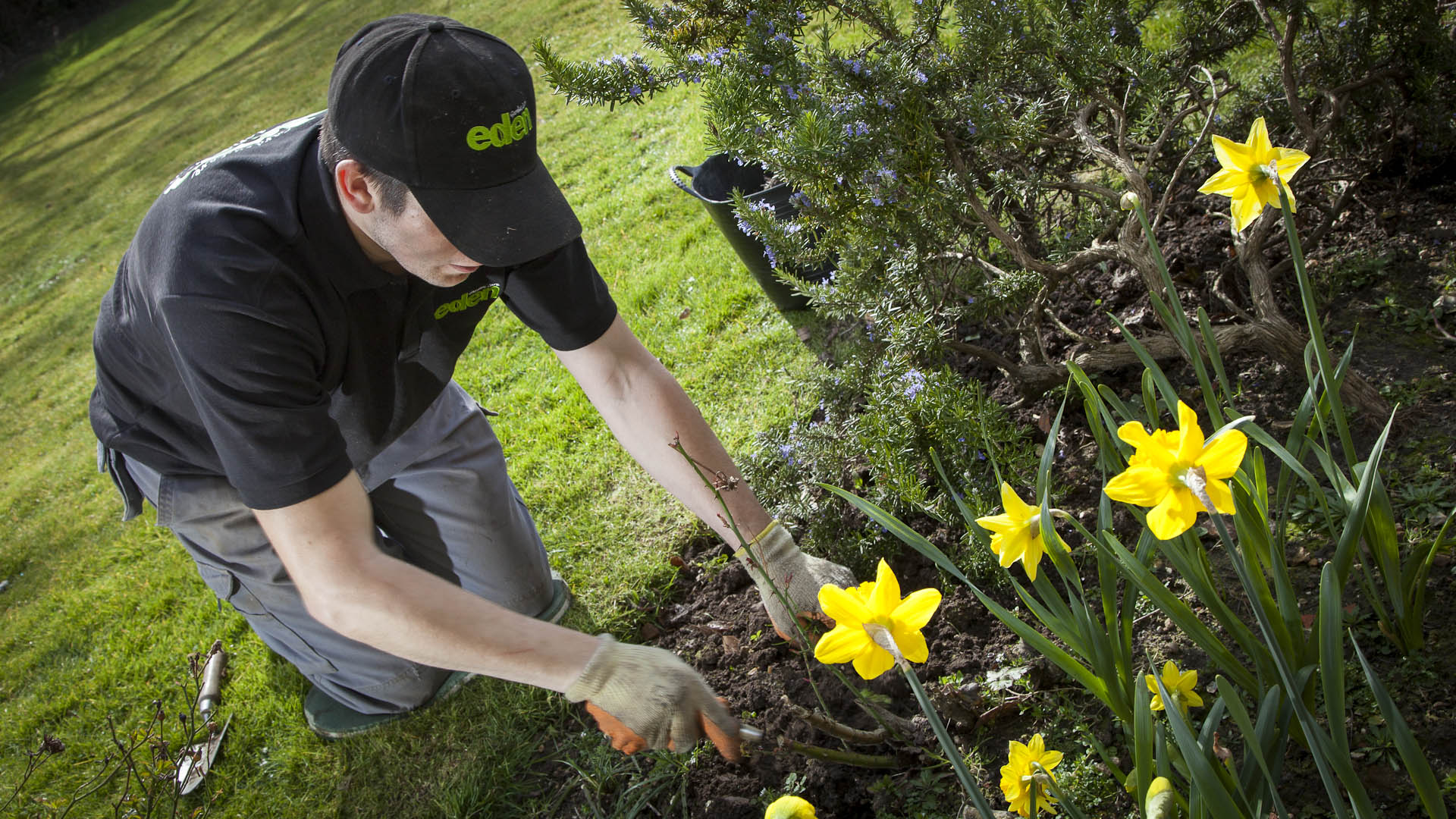 Eden homeslider 2 eden gardening services worthing for Gardening services